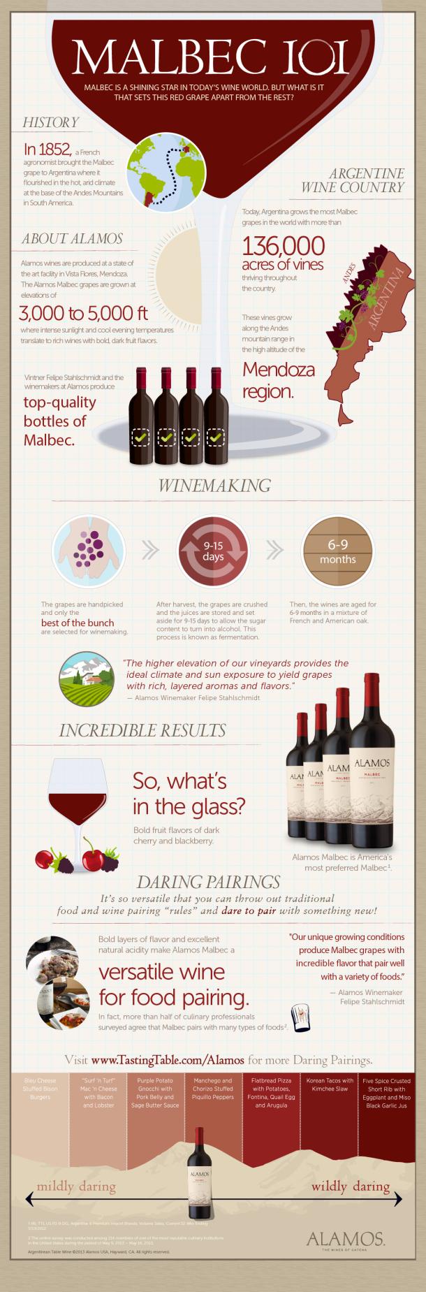 malbec-101_Infographic